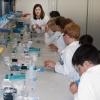 lehramtsausbldung-im-fehling-lab